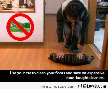 Funny use your cat to clean your floors life hack at PMSLweb.com