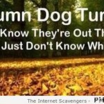 Funny autumn dog turds – Hump day goodies at PMSLweb.com