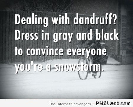 Dealing with dandruff funny life hack at PMSLweb.com