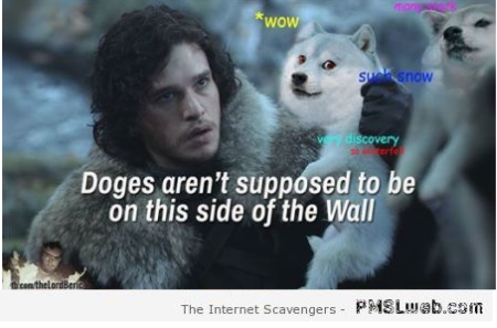Funny doges in Game of thrones at PMSLweb.com