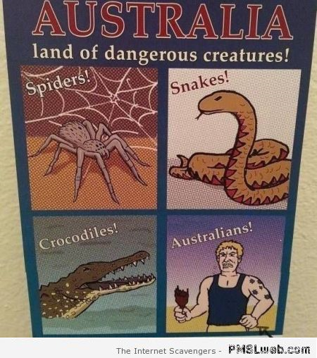 Australians dangerous creatures humor at PMSLweb.com