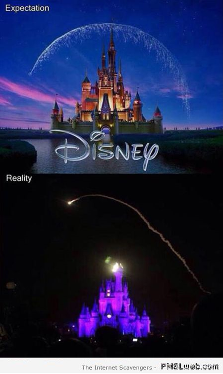 Disneyland expectations vs reality meme at PMSLweb.com