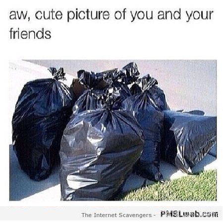 Cute picture of you and your friends sarcasm at PMSLweb.com