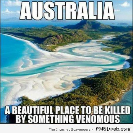 Australia a beautiful place to be killed meme – Funny Straya at PMSLweb.com