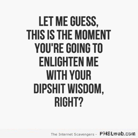 Your dipshit wisdom sarcastic quote – Tuesday sarcasm at PMSLweb.com