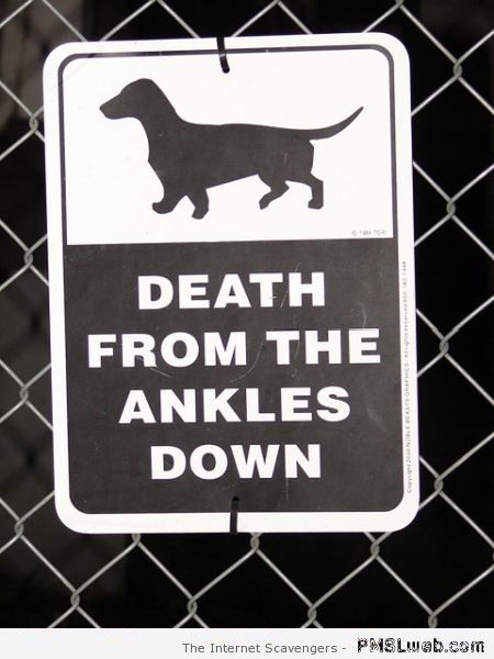 Funny death from the ankles down sign at PMSLweb.com