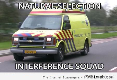 10 natural selection interference squad meme 10 natural selection interference squad meme pmslweb