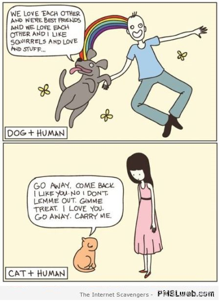 Dog and human vs cat and human  - Sarcastic Avenue at PMSLweb.com