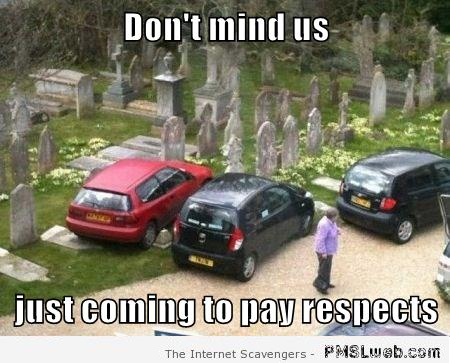 Cemetery parking fail meme at PMSLweb.com