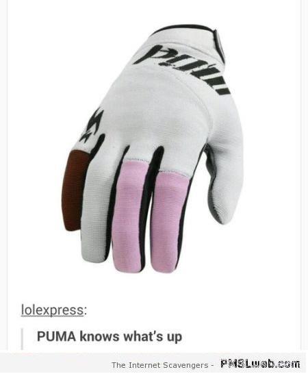 Funny naughty puma glove at PMSLweb.com