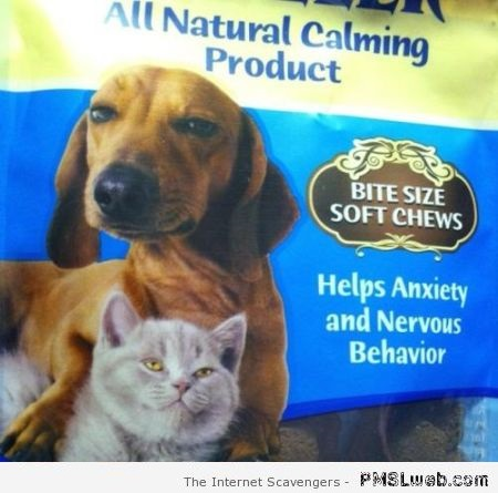 22-anxiety-chews-for-pets