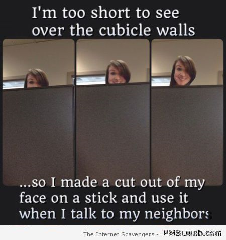 Too short to see over cubicle walls funny hack at PMSLweb.com