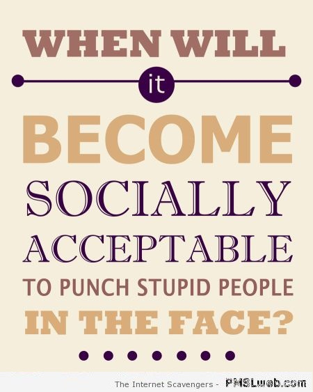 26-punch-stupid-people-in-the-face-quote