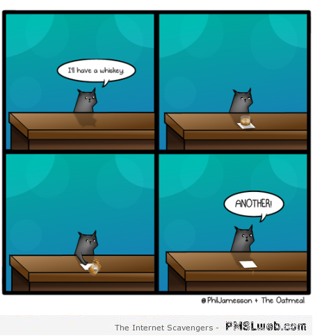 Cat ordering a drink funny cartoon at PMSLweb.com