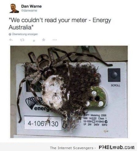 Energy Australia couldn't read your meter humor at PMSLweb.com