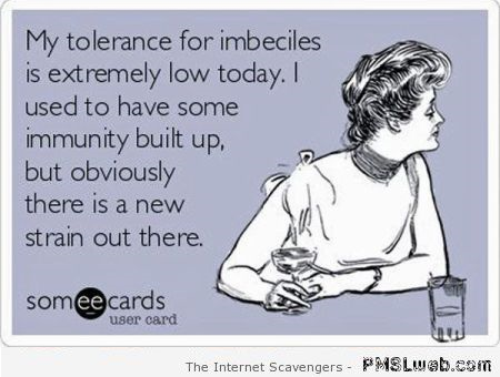 My tolerance for imbeciles sarcastic ecard – Bitchy and sarcastic at PMSLweb.com