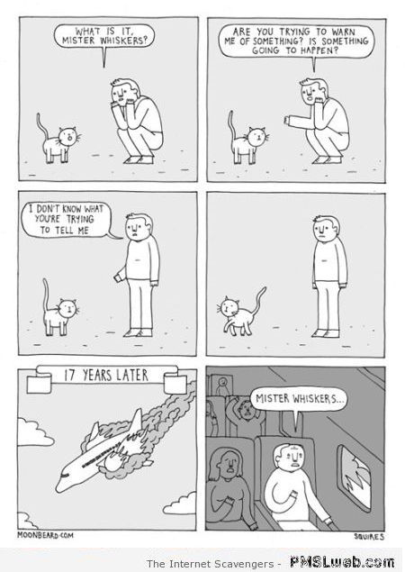 What are you trying to say cat funny cartoon at PMSLweb.com