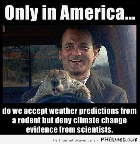 Only in America rodent humor at PMSLweb.com