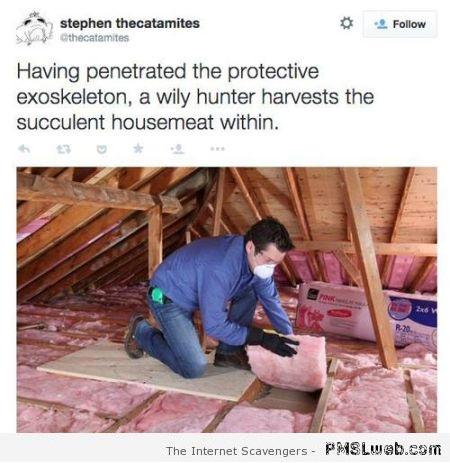 2-wily-hunter-harvesting-housemeat