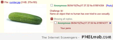 Name an object that no human has ever tried to use sexually at PMSLweb.com