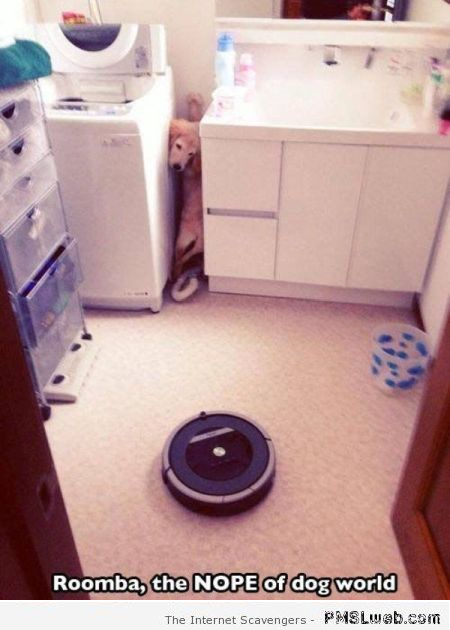 Roomba the nope of dog world meme at PMSLweb.com