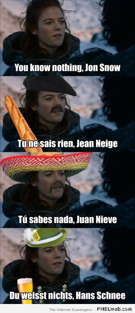 Funny multilingual Jon Snow meme at PMSLweb.com