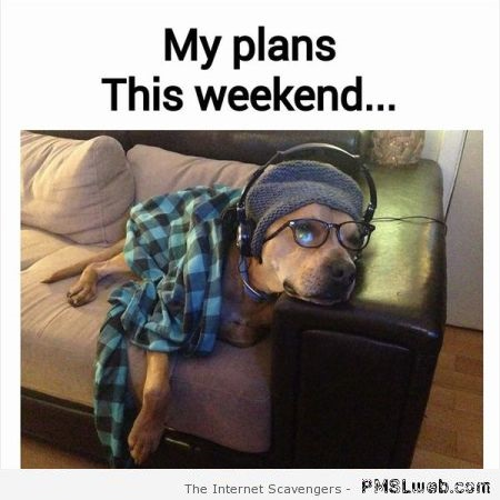 Funny my plans this weekend at PMSLweb.com