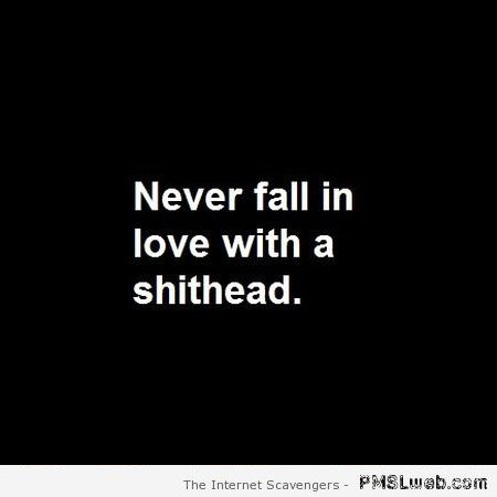 Never fall in love with a shithead quote at PMSLweb.com