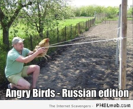 Angry birds Russian edition at PMSLweb.com