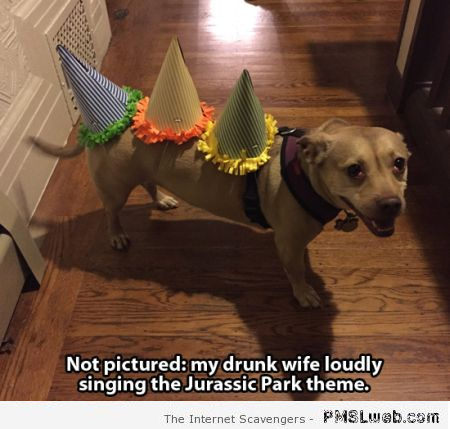 Drunk wife dog prank at PMSLweb.com