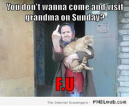 Funny Russian Grandmother meme at PMSLweb.com