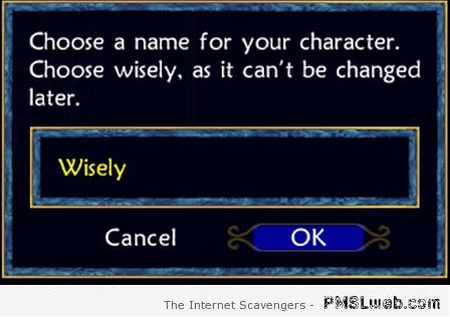 Choose a name for your character humor – Silly Friday at PMSLweb.com