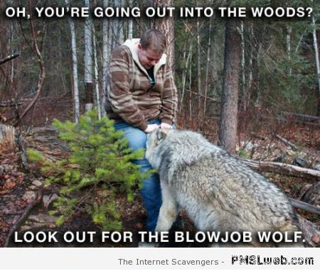 Funny blowjob wolf meme – Hump day madness at PMSLweb.com
