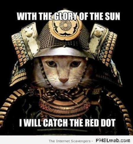 I will catch the red dot meme at PMSLweb.com