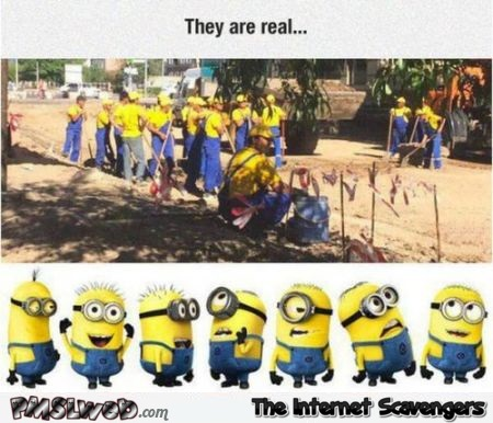 Minions are real humor – Wednesday mischief at PMSLweb.com