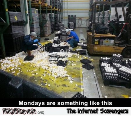 Mondays feel like this funny at PMSLweb.com