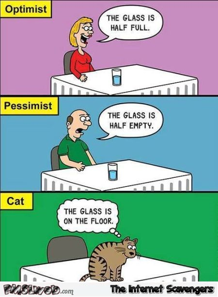 Funny optimist, pessimist and cat cartoon at PMSLweb.com