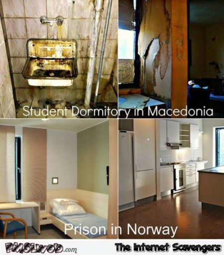 WTF Student dormitory versus prison at PMSLweb.com