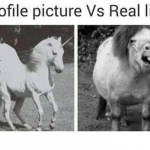 Funny profile picture versus real life – Monday funnies at PMSLweb.com