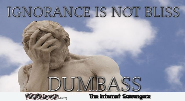 Ignorance is not bliss funny quote at PMSLweb.com