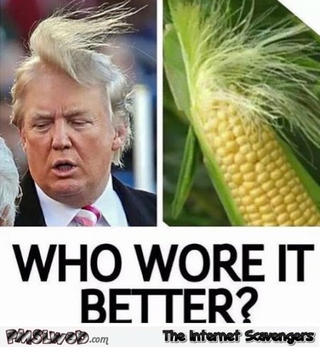 Who wore it better Donald Trump or the corn cob humor at PMSLweb.com
