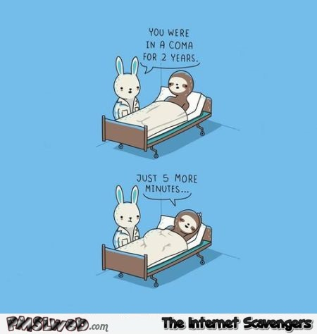 Sloth in a coma funny cartoon – Daily funny pictures at PMSLweb.com