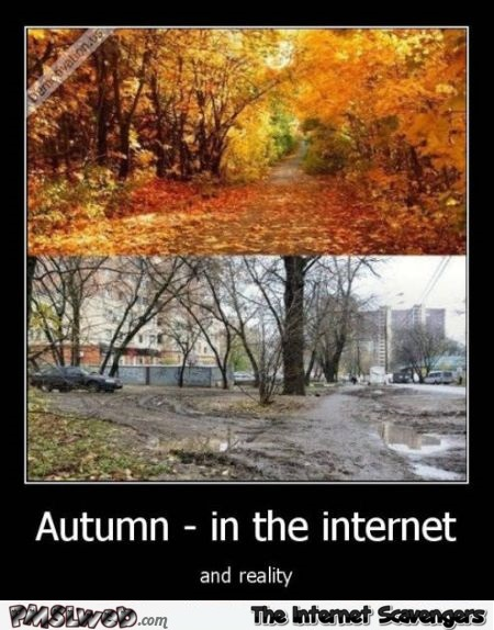 Autumn on the internet versus reality at PMSLweb.com