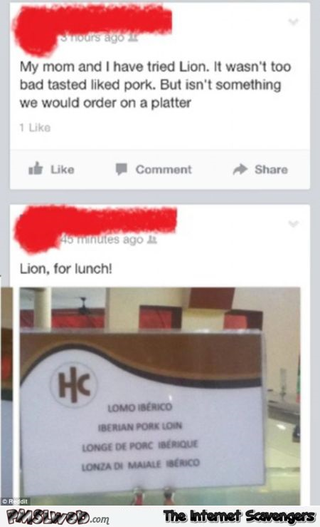 My mom and I have tried Lion facebook fail @PMSLweb.com