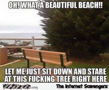 Funny bench meme – Hump day mischief at PMSLweb.com
