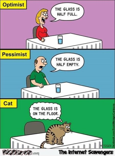 Optimist, pessimist and cat – Monday PMSL @PMSLweb.com
