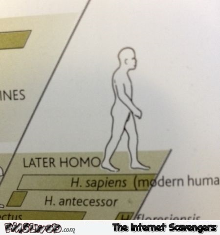 Later homo humor @PMSLweb.com