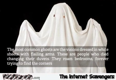 The most common ghosts are the duvet ghosts humor @PMSLweb.com