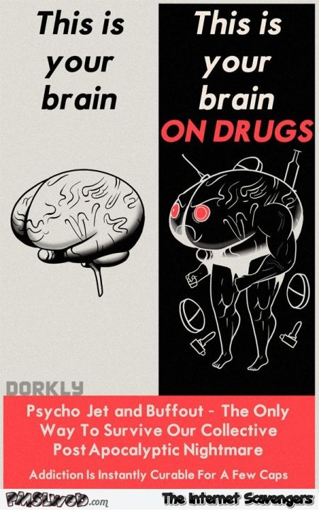 Your brain on drugs Dorkly humor @PMSLweb.com