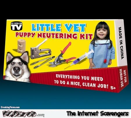 Fake little vet kit @PMSLweb.com